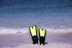 Flossen auf dem Strand Lizenzfreies Stockfoto