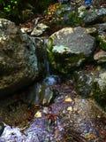 Flot au-dessus des roches Image libre de droits