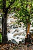 Flot d'automne de Chamang photographie stock