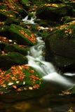 Flot d'automne en montagnes géantes Photos libres de droits