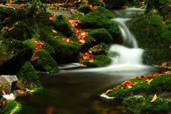 Flot d'automne en montagnes géantes Photo stock