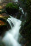 Flot d'automne en montagnes géantes Images libres de droits