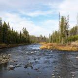Flot dans Yellowstone Images libres de droits