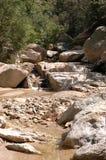 Flot de l'Arizona Photos libres de droits
