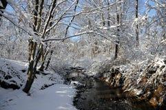 Flot de l'hiver photo libre de droits