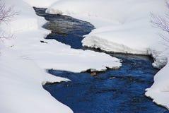 Flot de l'hiver Photographie stock