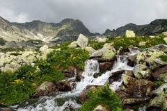 Flot de montagne Photos stock