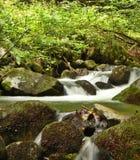 Flot de montagne Images libres de droits