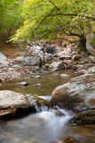 Flot de montagne Photos libres de droits