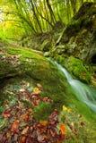 Flot de montagne d'automne Photographie stock