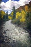 Flot de montagne du Colorado photographie stock