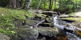 flot de montagne rocheuse Photographie stock