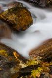 Flot en automne Photographie stock