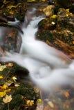 Flot en automne Image libre de droits