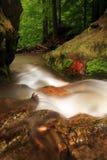 Flot en montagnes de Jeseniky Photographie stock libre de droits