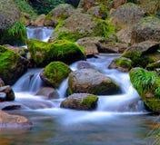 Flot et roches Photographie stock libre de droits