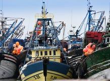 Flota pesquera, Essaouira Marruecos Imagen de archivo libre de regalías