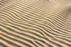 Textura de la arena con la arena flotante a través Fotografía de archivo