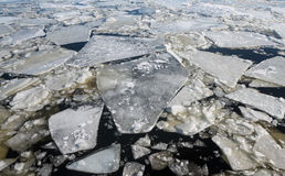 Flotación del hielo Foto de archivo