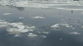 Flotación del hielo en el río de Neva en St Petersburg, Rusia almacen de video