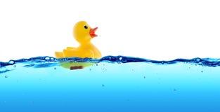 Flotador de goma del pato Foto de archivo libre de regalías