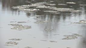 Flotador de la masa de hielo flotante de hielo en el agua de río en la estación del invierno almacen de video