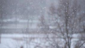 Flotador de los copos de nieve hacia arriba y hacia abajo almacen de metraje de vídeo