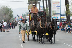 Flotador del carro del caballo Imagen de archivo