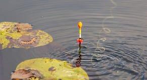 Flotador del pescador en la superficie del agua fotografía de archivo libre de regalías