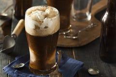 Flotador valiente oscuro congelado de la cerveza imagen de archivo