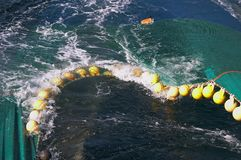 Flots of trawl net. Trawl Net Floats Sea fisheries Stock Images
