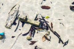 Flotsam and driftwood Stock Photo