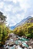 Flottörhus flod i bergdalen Arkivbilder
