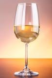 Flott exponeringsglas för vitt vin Arkivfoton
