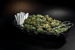 Flott exponeringsglasmaträtt med marijuanaknoppen, sax och dussin skarv royaltyfri fotografi