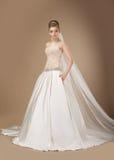 Flott kvinna i långt posera för elegant klänning royaltyfri bild