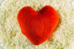 Flott leksak för hjärta på bakgrunden av ris Jag älskar ris fotografering för bildbyråer