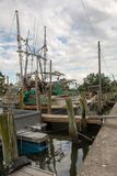 Flotta av shrimping fartyg fotografering för bildbyråer