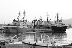 Flotte du ` s de pêcheurs dans le port B&W du ` s de Sozopol photo stock