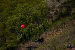 Flottement en forme de coeur de ballon rouge d'amour seul dehors Images libres de droits