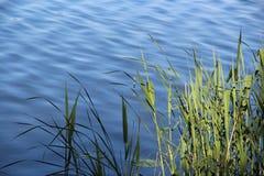 flotteur Photographie stock