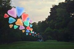 Flotteur coloré de ballon d'amour de coeur sur l'air avec la bicyclette au parc Photo libre de droits