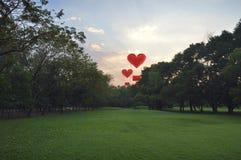 Flotteur de ballon à air de forme de coeur sur le ciel de soirée Photographie stock libre de droits