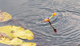 Flotteur de p?cheur sur la surface de l'eau photographie stock