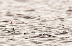 Flotteur sur l'eau Photographie stock libre de droits
