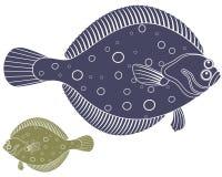 flounder Стоковые Фотографии RF