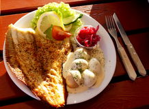Flounder dish. Flounder with potatoes and red onions Stock Image