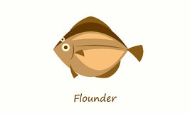 Flounder fish isolated on white. Simple flat image Royalty Free Stock Photography