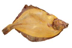 flounder Royalty Free Stock Photography