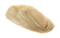 Flounder Raw On White Background Top View royalty free stock image